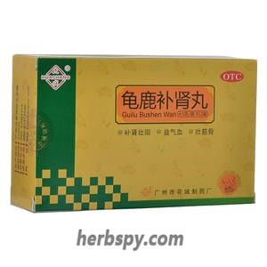 Gui Lu Bu Shen Wan for mental fatigue forgetfulness insomnia