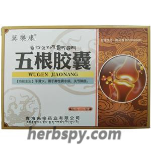 Wugen Jiaonang for swollen joints or urticaria or visceral abscess